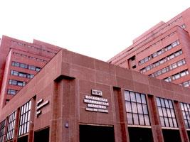 MMA-buildings